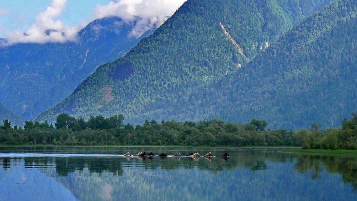Происхождение Телецкого озера