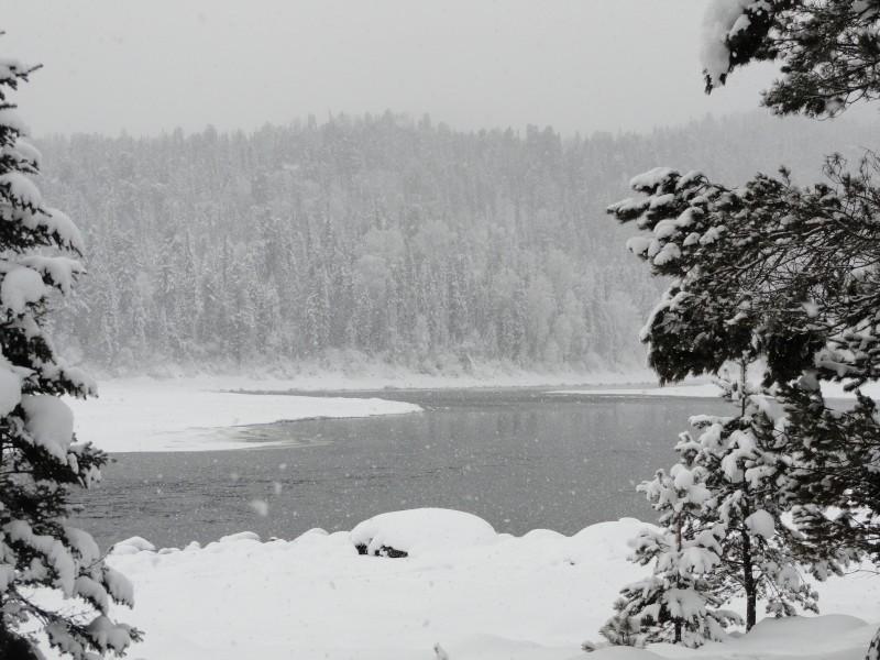 Природа Телецкого озера зимой